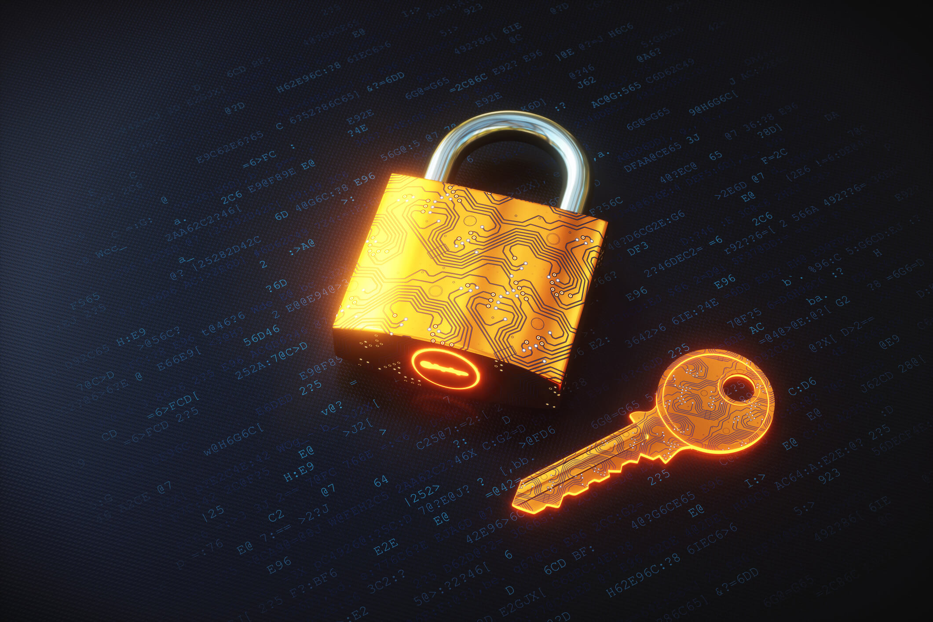 Quer saber como funciona a privacidade de dados nas empresas?